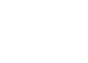 logo-roz-strategies-vertical-white